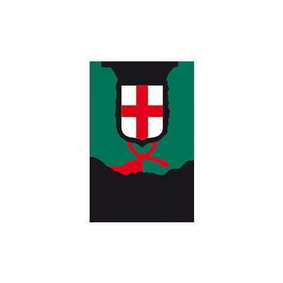 Riprenditi la città - comune_milano